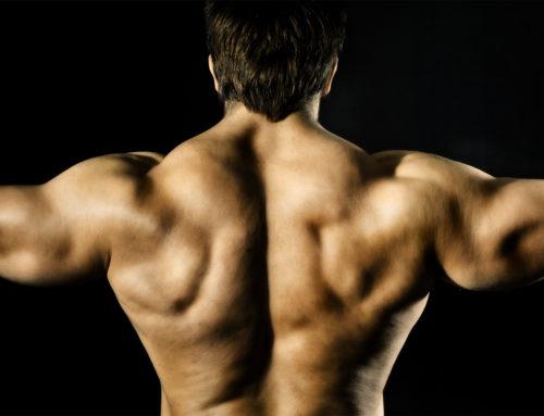 Zu viel Bodybuilding – schlecht für die Libido?
